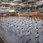 Bild des Kata Lehrgangs Kata-Spezial in Gross-Umstadt