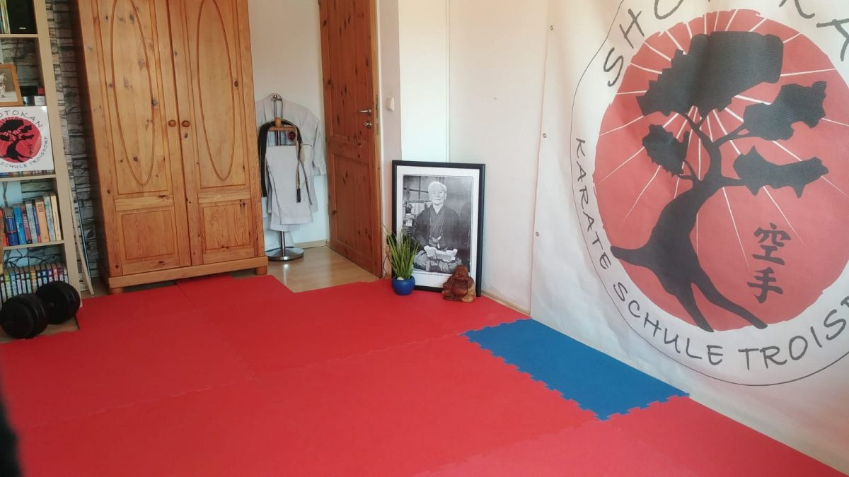 Bild des Online Trainings Dojo's