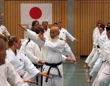 Die Karate Schule Troisdorf informiert über die Trainer, Training, Trainingszeiten und Fortbildung