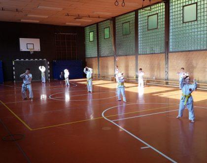 Karate-Schule: Gesundheit – Sicherheit und Hygiene