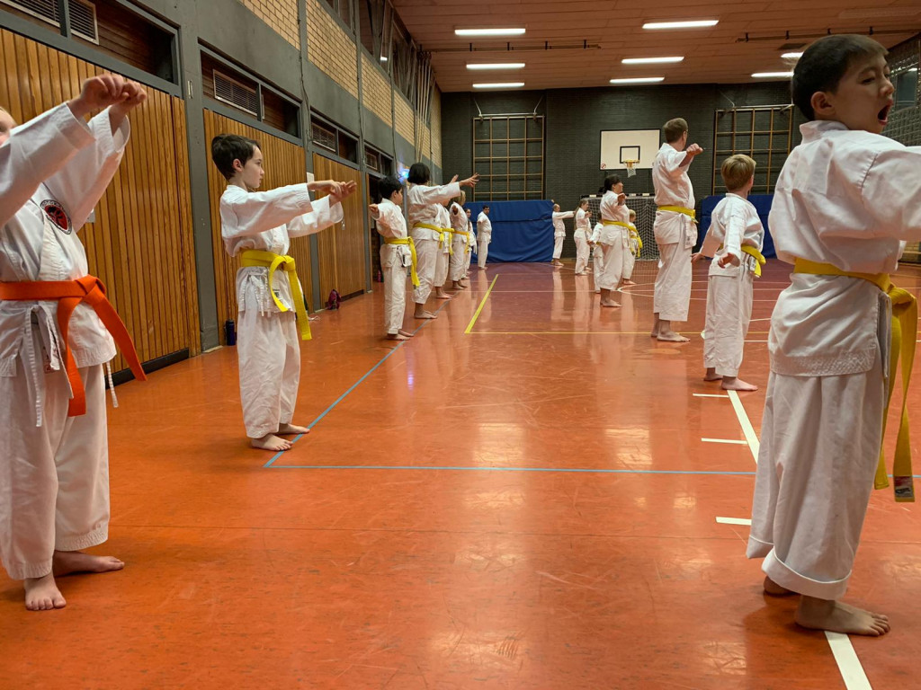 Kindergruppe der Karate-Schule Troisdorf