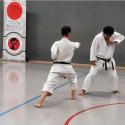 Die Dojo Kun Regeln