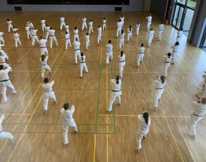 Karate-Lehrgang mit Großmeister Hideo Ochi